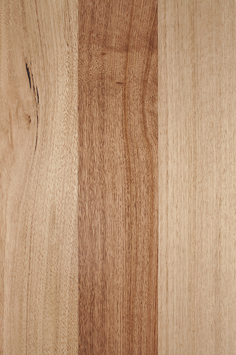 Tasmanian Oak High Gloss Arrowsun Specialty Flooring